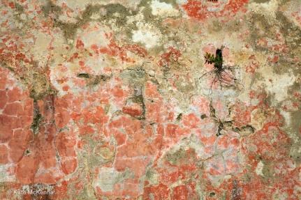 photo weathered wall