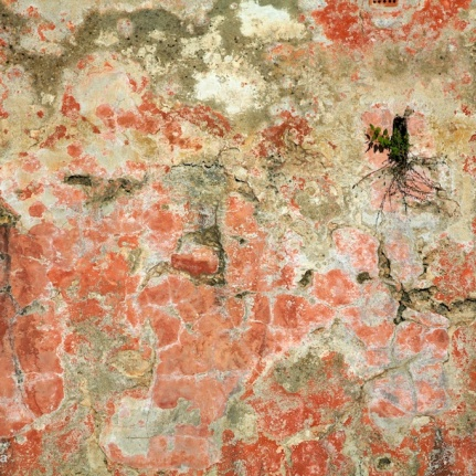 photo weathered wall
