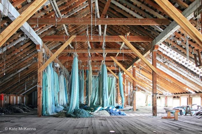 photo fishing nets